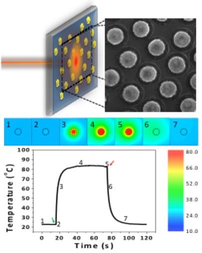 resonance raman spectroscopy of metalloproteins pdf